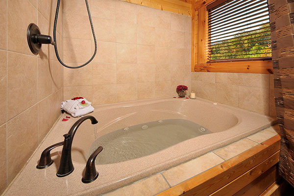 shower jet tub combo. Photo Above  Theater in the Sky Bathroom with Jacuzzi Tub and Shower Cabin Pigeon Forge Awesome Mountain