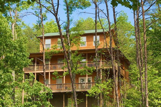 Cabinsonline for Papa bear cabin pigeon forge tn