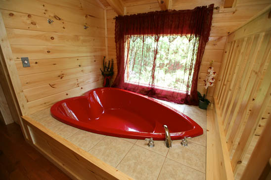 Cabin with swimming pool in smoky mountains near pigeon for Pigeon forge cabins with hot tub